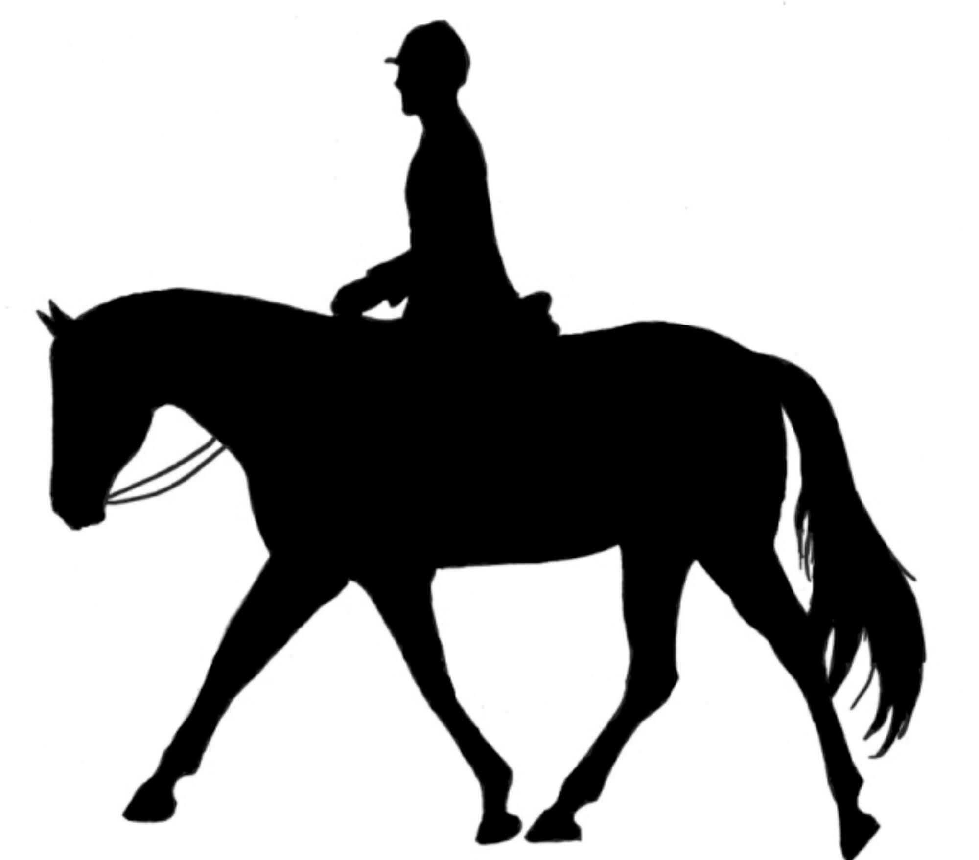 Atlı Turlar