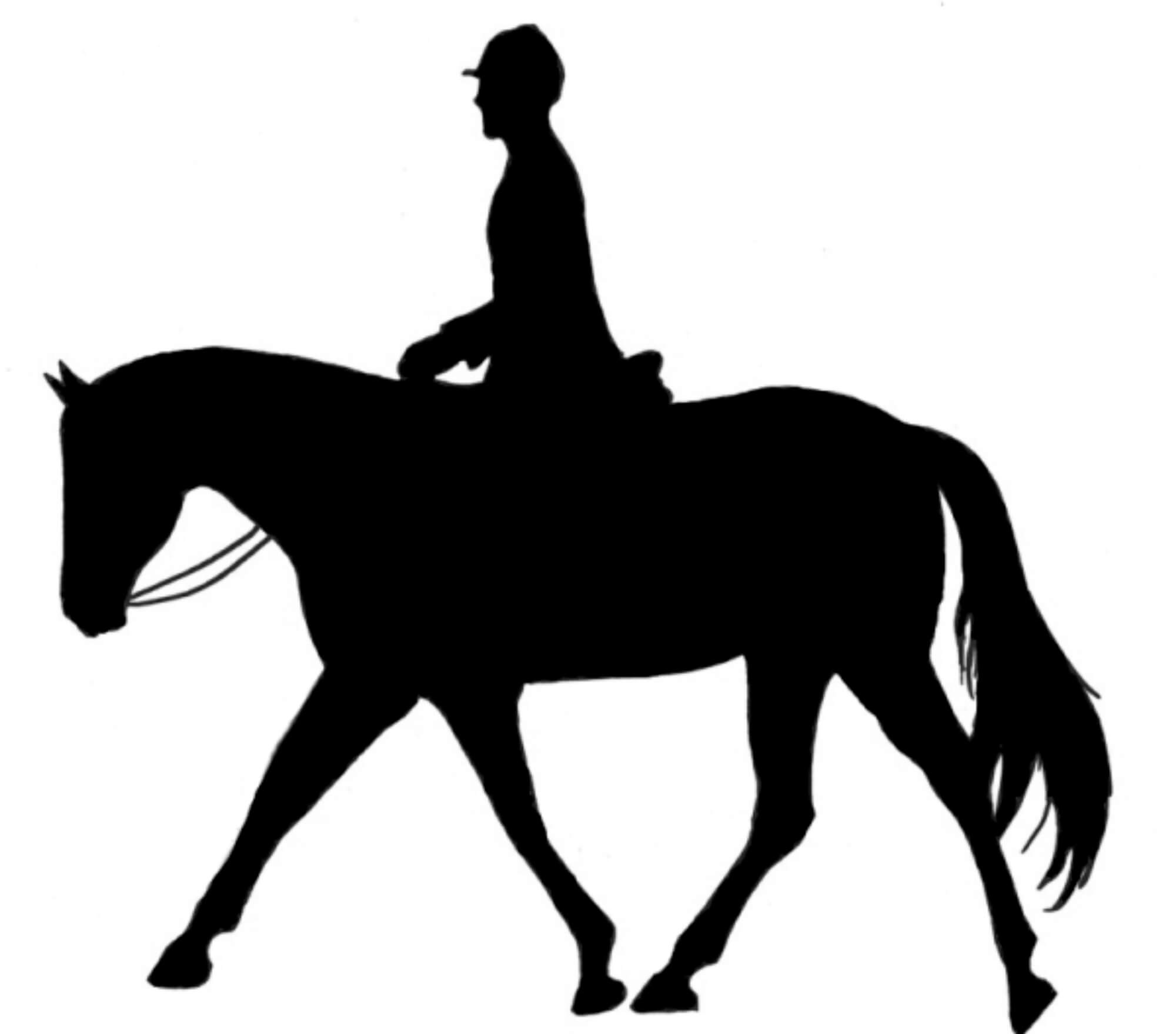 Equestrian Tours